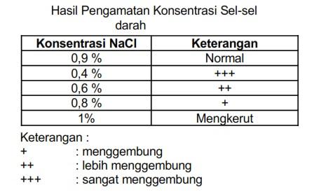 Larutan garam NaCl 0,9 persen yang cocok dalam darah manusia