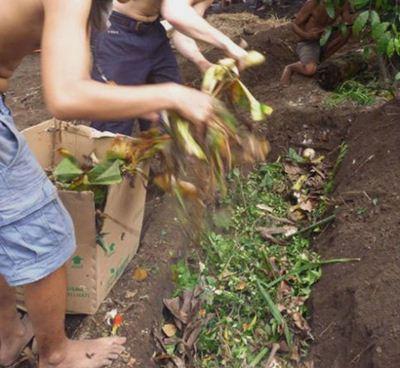 Menggali bedengan sedalam 20-30 cm