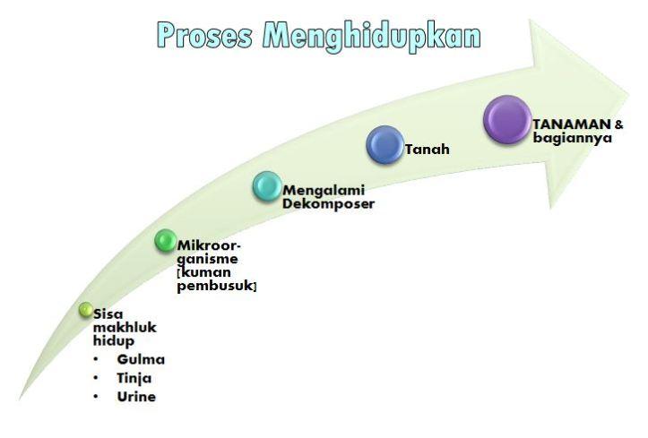 Pengolahan tanah secara organik - Proses menghidupkan