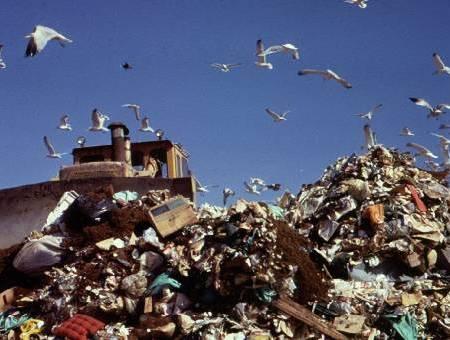 Membuat plastik ramah lingkungan