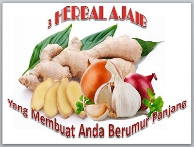 3 Herbal Ajaib Buat Panjang Umur