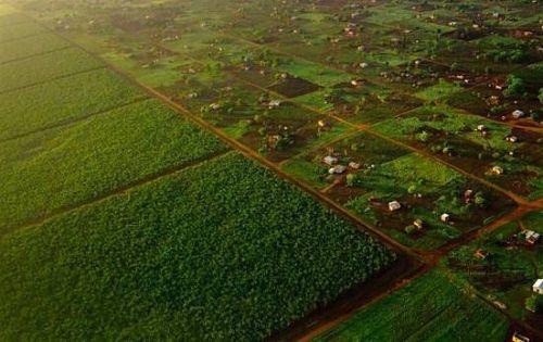 Teknik menghemat lahan pertanian