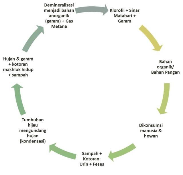 Perputaran bahan organik menjadi anorganik (demineralisasi) yang turut menghasilkan gas metana