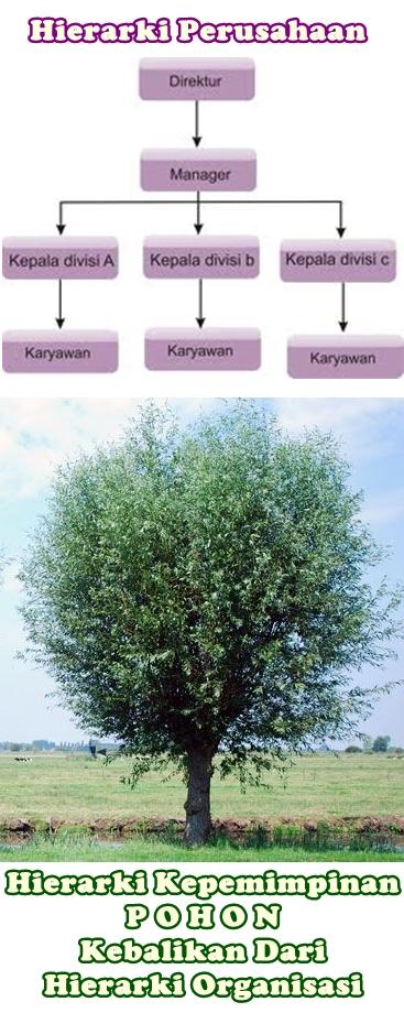 Hierarki Kepemimpinan Gaya Pohon Kebalikan Dari Hierarki Organisasi Secara Umum